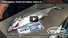 Sawara/Spanish Mackerel