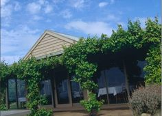 Ten Mornington Peninsula Wedding Venues -- quite an old picture here, but a pleasure to be on this list!