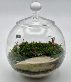 Terrario de musgo vivo en bola de cristal de diámetro 10 cm. Todos los productos utilizados son naturales. Hoyo 1 - Green protegido por dos búnker, uno a la derecha y otro a la izquierda. Natural, Home Decor, Moss Terrarium, Terrariums, Mini Gardens, Crystal Ball, Unique Gifts, Products, Crystals