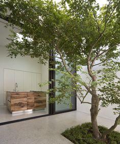 studioata / casa tra gli alberi, torino