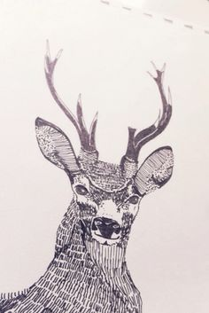Deer by Willy Ollero
