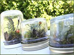 11 Creatively Crafty Ways to Reuse Clean Baby Jars 4 - https://www.facebook.com/different.solutions.page