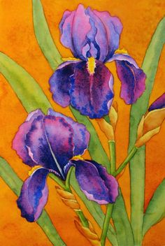 Drawing and painting purple irises can be a challenge! It is also a great opportunity to draw these intricate, undulating shapes, and to c...