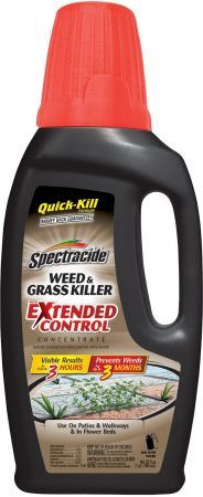 Spectracide Weed & Grass Killer with Extended Control Concentrate 32 oz. for sale online Bug Control, Weed Control, Flea Spray, Types Of Insects, Garden Guide, Garden Pests, Lawn Care, Lawn And Garden, Organic Gardening