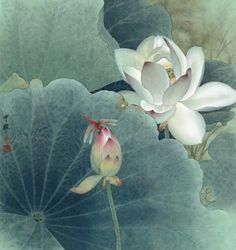 Zhou Zhongyao was born in Changsha, Hunan Province in .Zhou Zhongyao was born in Changsha, Hunan Province in He is now member of Hunan Branch of Chinese Artists Association. Lotus Painting, Lily Painting, Japanese Painting, Chinese Painting, Art Aquarelle, Watercolor Paintings, Art Chinois, Chinese Flowers, Art Asiatique