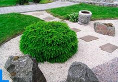 japanese garden design, yard landscaping ideas