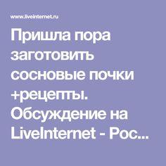 Пришла пора заготовить сосновые почки +рецепты. Обсуждение на LiveInternet - Российский Сервис Онлайн-Дневников