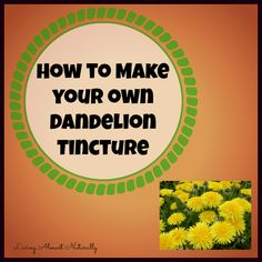 How to make your own dandelion tincture