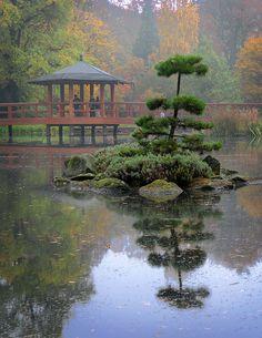 Japanese Garden - Wroclaw, Dolnoslaskie