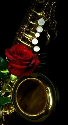 Saxophone and a rose.