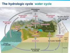 Resultado de imagen para hydrologic cycle ciclo hidrolgico image result for education water cycle ccuart Gallery