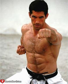 Scott Atkins is an Incredible Martial Artists in my book. I am a Hugh fan of his. Karate, Marshal Arts, Scott Adkins, Fighting Poses, Anatomy Poses, Dynamic Poses, Martial Artists, Body Poses, Action Poses