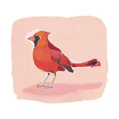 Inquisitive Cardinal Art Print - Limited Edition by Betty Hatchett | Minted