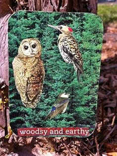 ACEO Woodsy and Earthy Artist Trading Card by TierraSolPaz on Etsy, $2.00