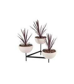The Best Plant Stands on the Market via @MyDomaine