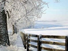 Winter Days-Order an Enlargement of these Beautiful Snow Scenes Winter Szenen, Winter White, Champs, Snow Scenes, Winter Beauty, Cool Countries, Country Christmas, White Christmas, Beautiful World