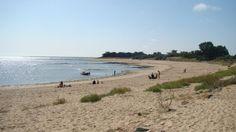 Plage de Gros Jonc près du village des Portes-en-Ré, face à l'océan et aux côtes vendéennes  - Charente-Maritime.