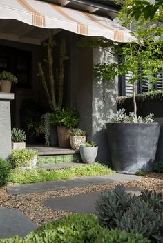 Sophisticated concrete and stone garden containers planted so inviting at an entrance.(Peter Fudge)