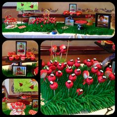A ladybug theme candy buffet I did for my nieces 1st birthday. Adorable!