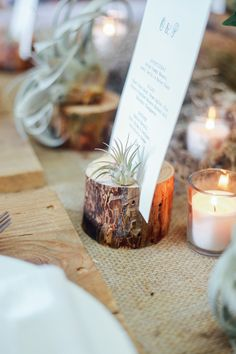 A Month Of Weddings // Wood & Succulent Table Inspiration