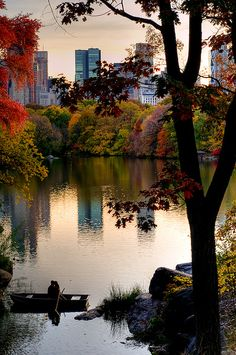 A little romance in Central Park, New York