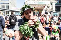 3 cannabis events you need to do #StonedInsider