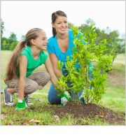 Easy Guide to #Compost and #Planting Trees - By Purex