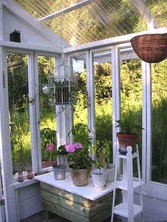 Puutarha.net - Keskustelupalstat - Kasvihuone - Kasvihuone ikkunoista?