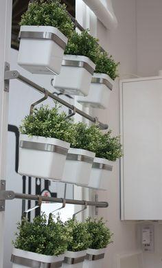 Ikea @ Woonbeurs Amsterdam 2012. Planten in de keuken.  Dit is een idee voor planten in het biologie lokaal. Voor decoratie maar ook voor onderzoek of voorbeeld of bij uitleg.