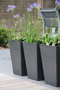 Our current external patios can truly use lots of huge planter pots outside, but they can add taking place to thousands of dollars appropriately quickly! Tall Outdoor Planters, Big Planters, Modern Planters, Garden Planters, Planter Pots, Succulent Planters, Concrete Planters, Balcony Garden, Succulents Garden