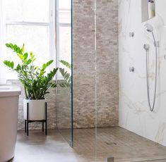 Stand out in Mustard, the latest addition in Case Study® Ceramics. Save on all Mustard now through April Bathroom Plants, Go Green, Hanging Plants, Floral Design, Furniture, Case Study, Mustard, Bathrooms, Home Decor