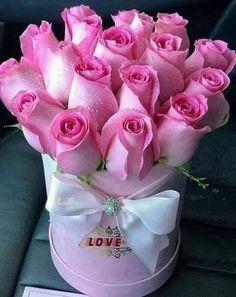 Why Rose Gardening Is So Addictive - Urban Gardening Good Morning Beautiful Flowers, Beautiful Rose Flowers, Beautiful Flower Arrangements, Morning Flowers, Exotic Flowers, Pretty Flowers, Pink Flowers, Flower Box Gift, Happy Birthday Flower