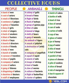 Collective Nouns: Useful List & Examples in English Common Collective Nouns Teaching English Grammar, English Grammar Worksheets, English Writing Skills, English Vocabulary Words, English Language Learning, English Phrases, Learn English Words, English Study, English Lessons