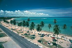 Maceió, capital do estado de Alagoas, tem algumas das mais belas praias urbanas do Brasil.