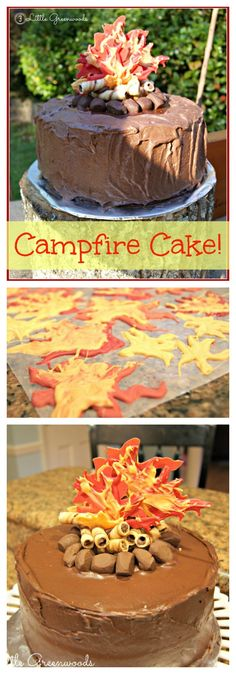 This is the PERFECT birthday cake for my son's Backyard Campout Birthday Party! Great step by step directions for making a Campfire Birthday Cake! Awesome idea for a summer birthday party! // 3 Little Greenwoods Cake Boy) Birthday Bbq, 18th Birthday Cake, Cool Birthday Cakes, Birthday Cupcakes, Summer Birthday, Bonfire Birthday Party, Camping Birthday Cake, Birthday Ideas, 21st Cake