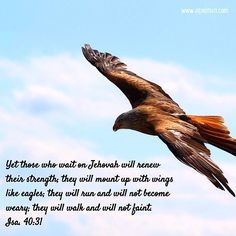 Isa. 40:31 Yet those who wait on Jehovah will renew their strength; they will mount up with wings like eagles; they will run and will not become weary; they will walk and will not faint.