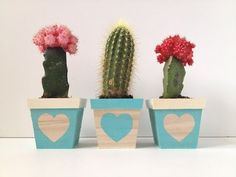 A super simple DIY for an adorable lil trio of succulent planters. Free tutorial with pictures on how to make a vase, pot or planter in under 10 minutes by decorating with acrylic paint and plant pots. How To posted by Mandy P // Fabric Paper Glue. Cement Pots, Ceramic Planters, Succulent Planters, Pots D'argile, Cactus Plante, Decorated Flower Pots, My Flower, Flowers, Diy Back To School