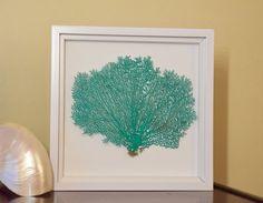 Framed Green Caribbean Sea Fan