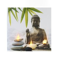 Citations option bonheur: Citation de Bouddha sur le bonheur                                                                                                                                                                                 Plus