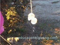pesca cubitos de hielo con una cuerda y sal 0 Diana, Dandelion, Flowers, Plants, Educational Activities, Ice, Cubes, Twine, Fishing