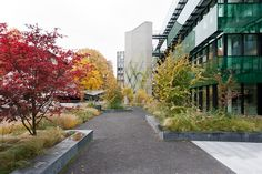 Bürogebäude UBS Gartenstrasse, Basel   Rotzler Krebs Partner, Landschaftsarchitekten, Winterthur