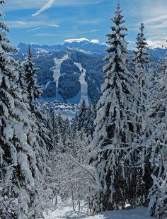 Les Gets et le Massif du Mont Blanc [Les Gets and the Mont Blanc Massif]  depuis [from]: Mont Chery 1826m 10/02/2013 Crédit photo: Alain Towner