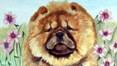 14 Lovely Chow Chow Pictures To Make Your Day | Page 3 of 3 | PetPress Black Chow Chow, Chow Chow Dogs, Love Hug, Dog Love, Cute Potato, Companion Dog, Having A Bad Day, Pet Store, Cute Pictures