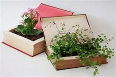 book plant