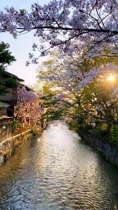 Japan Landscape, Fantasy Landscape, Landscape Photos, Landscape Photography, Nature Photography, Beautiful Nature Scenes, Amazing Nature, Beautiful Landscapes, Aesthetic Japan