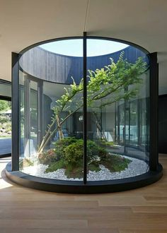 Indoor Garden by Wood Marsh