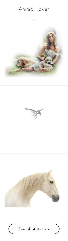 """""""~ Animal Lover ~"""" by romantiquechic ❤ liked on Polyvore featuring backgrounds, bird, home, home decor, wall art, photography, white, horse wall art, white home accessories and white framed wall art"""
