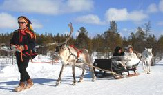 Imagine sitting in a sledge pulled by reindeers for a short ride through a magical snow-covered forest to tie the knot in romantic Lapland   http://www.planetweddings.co.uk/lapland.html