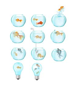Vector packs and clip art, Vectors illustration, fonts and high resolution Stock Images. Chose from more than 5000 stock graphic files. Fish Vector, Vector Art, Golden Fish, Free Vector Files, Your Design, How To Draw Hands, Clip Art, Illustration, Image