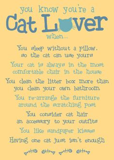 You Know You're a Cat Lover - Magnet : Wholesale Gifts for Dog Lovers, Dog Birthday items, Sympathy and Greeting Cards, dog and puppy photo frames, Wholesale Pet Gifts Crazy Cat Lady, Crazy Cats, Cat Quotes, Lovers Quotes, Qoutes, Work Quotes, All About Cats, Cat People, Cat Facts